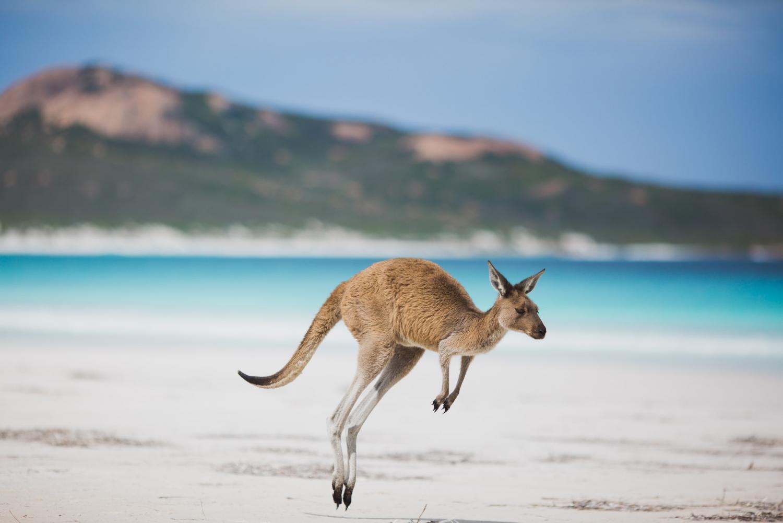 Australia CambodiaAW Private Travel