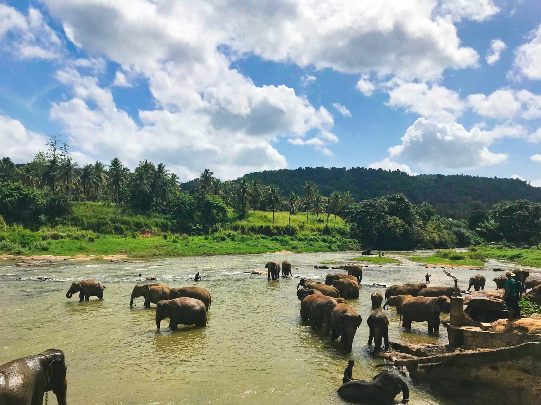 Sri Lanka AW Private Travel