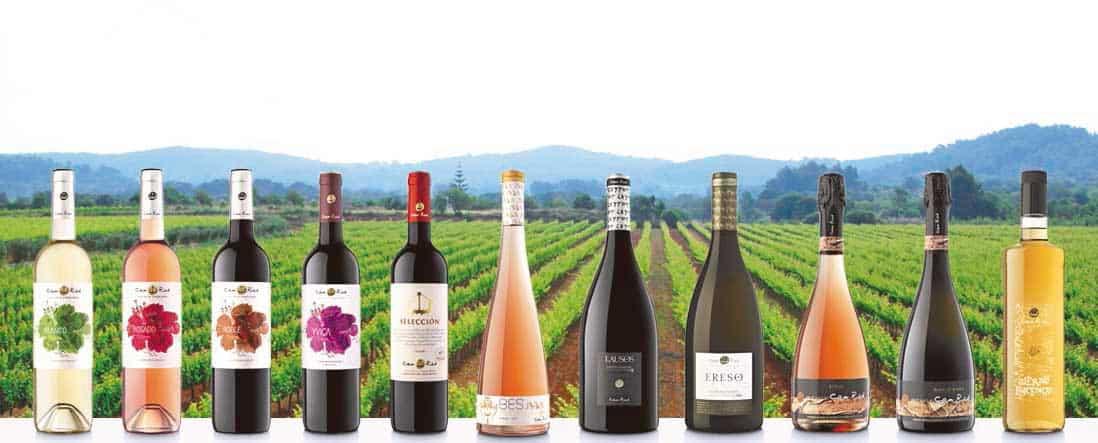 Ecological Wine Tasting