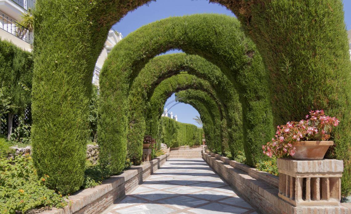 The Gardens Penthouse