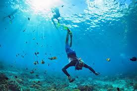 6 UAE aquatic adventures