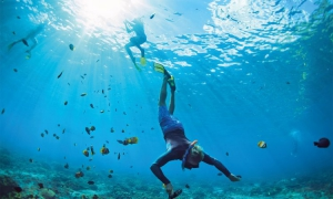 6 UAE aquatic adventures
